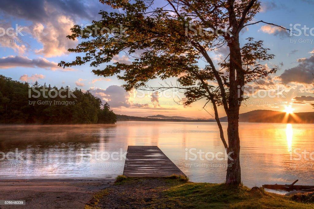 Tree and Dock Adirondacks Sunset stock photo