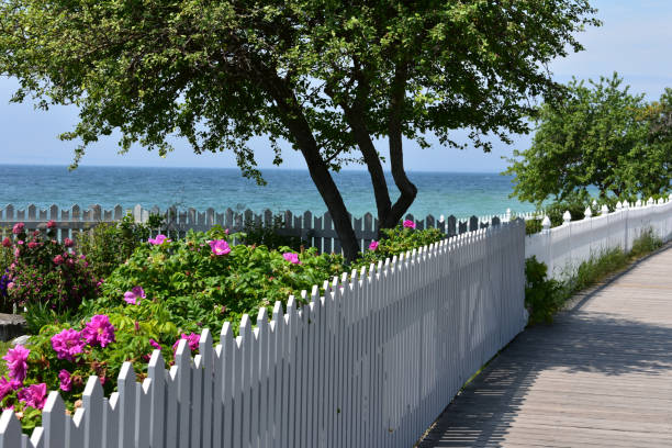 tree and garden with great lakes view - mackinac island stock photos and pictures