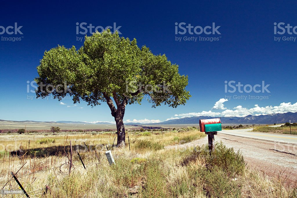 Tree and mailboxes in New Mexico stock photo