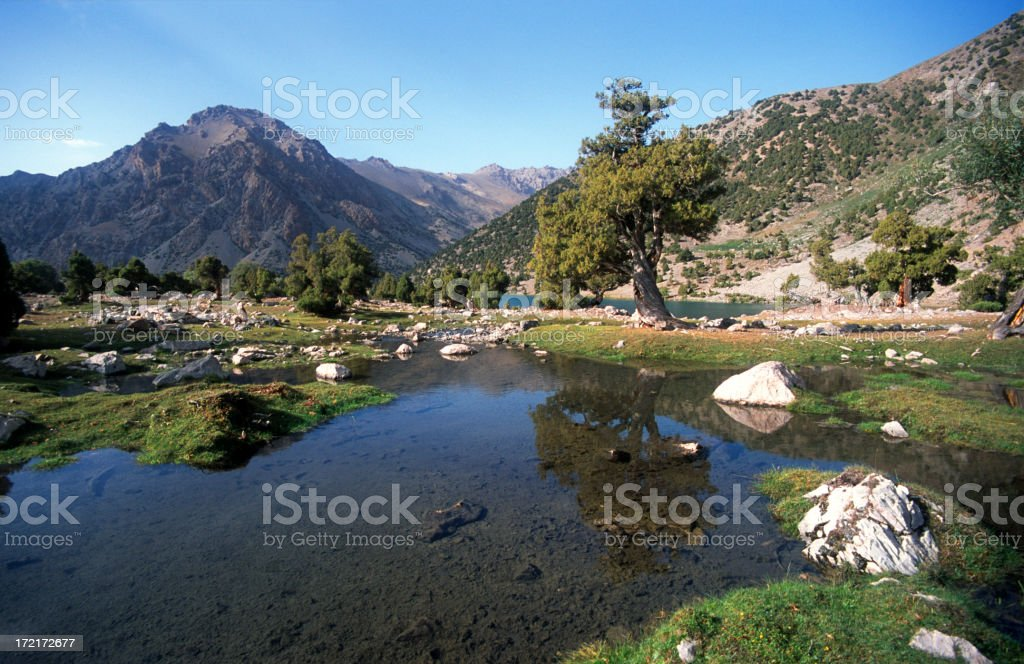 Tree and mountain mirrored in little lake royalty-free stock photo