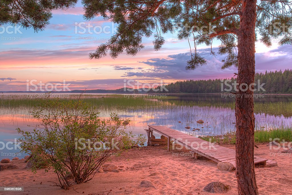 Tree and pier on shore of lake in beautiful evening royalty-free stock photo
