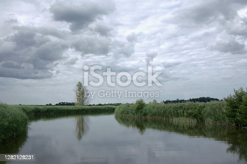 A peaceful, windless day with clouds in the sky. Reflections of a tree and reedbeds in a calm narrow river (Norfolk Broads)