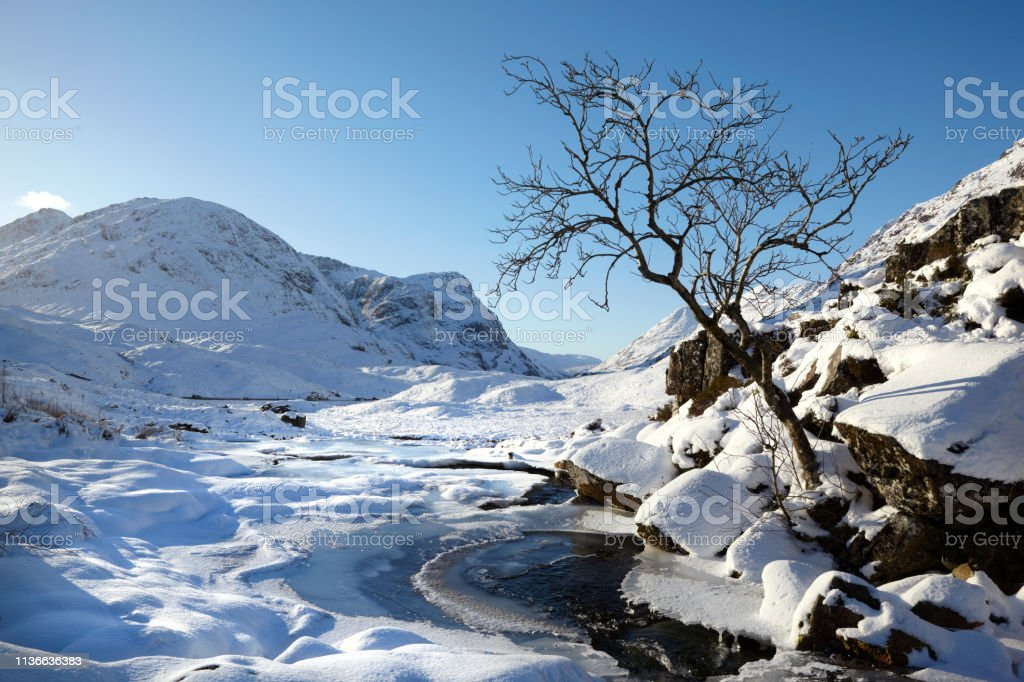 Tree and stream at Glencoe, Scottish Highlands, Scotland, UK stock photo