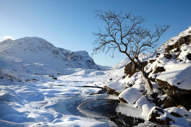 Tree and stream at Glencoe, Scottish Highlands, Scotland, UK stock photo