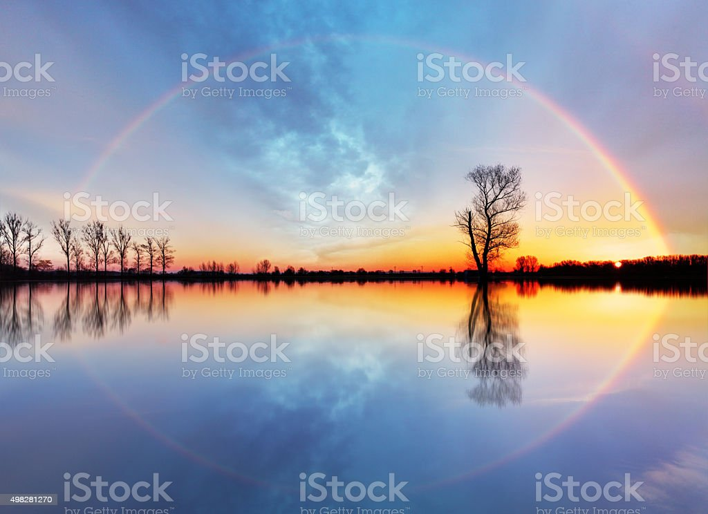 Tree and sun on lake sunrise stock photo