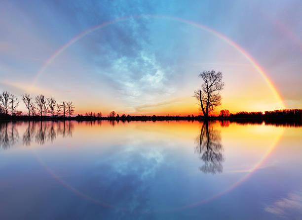 albero e sole sul lago alba - arcobaleno foto e immagini stock