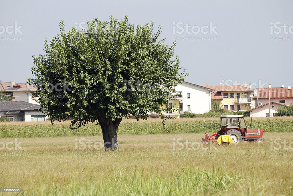 tree and tractor royalty-free stock photo
