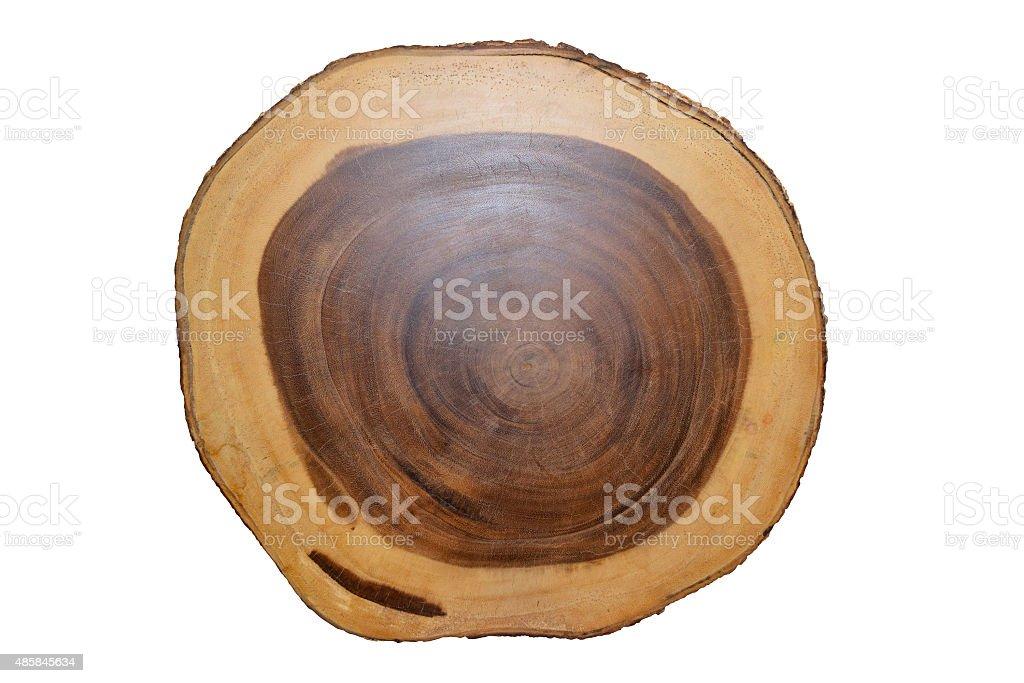 Anillo de árbol anual círculo de madera aisladas sobre fondo blanco - foto de stock