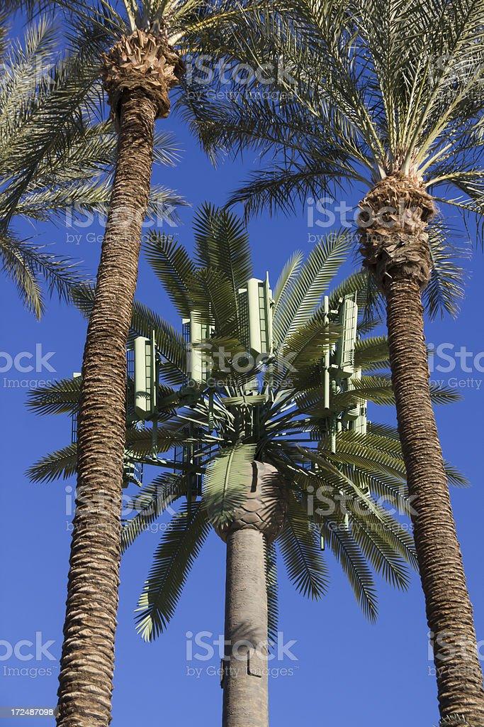 Tree Antenna royalty-free stock photo