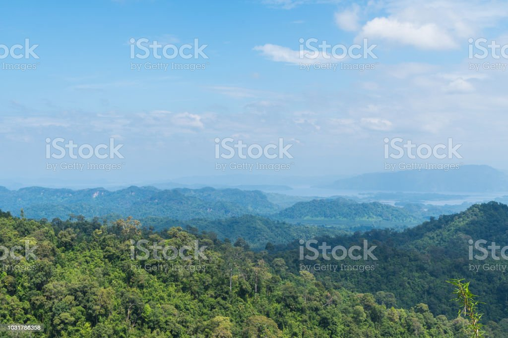Baum an der Spitze des Berges – Foto