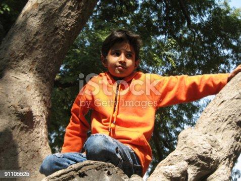 istock Tree Boy 91105525