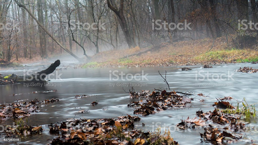 Tree branch in Silky Stream Water stock photo