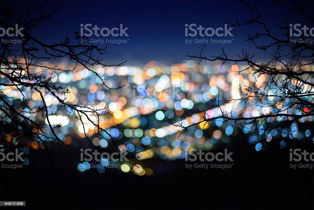silhueta de ramo de árvore em foco turva da vista da cidade à noite - foto de acervo