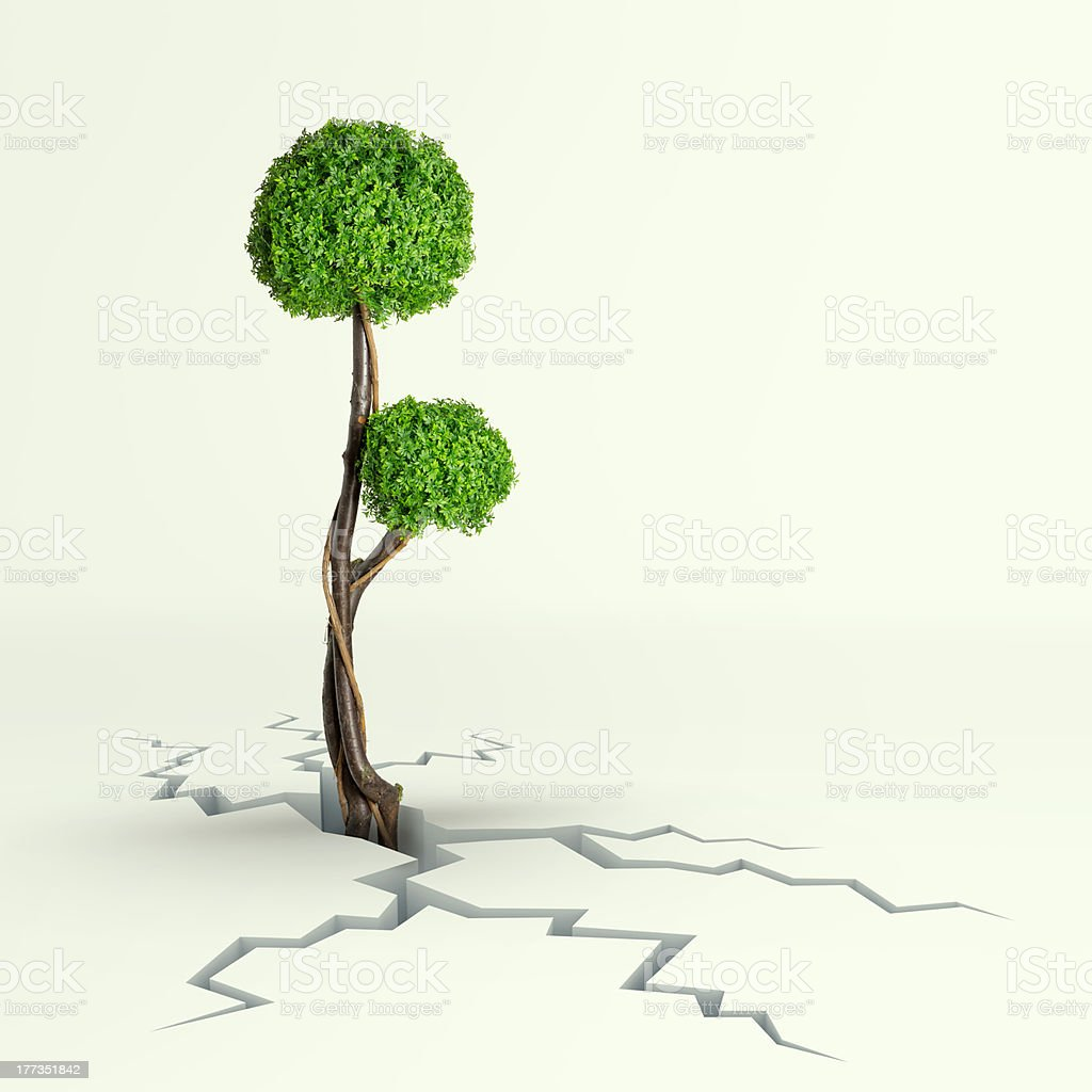 Tree Breaks Free royalty-free stock photo