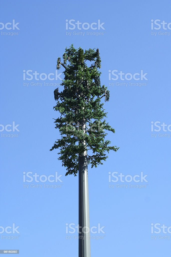 Tree cell phone tower royalty-free stock photo