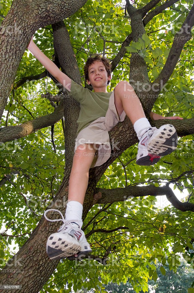 Tree climb royalty-free stock photo