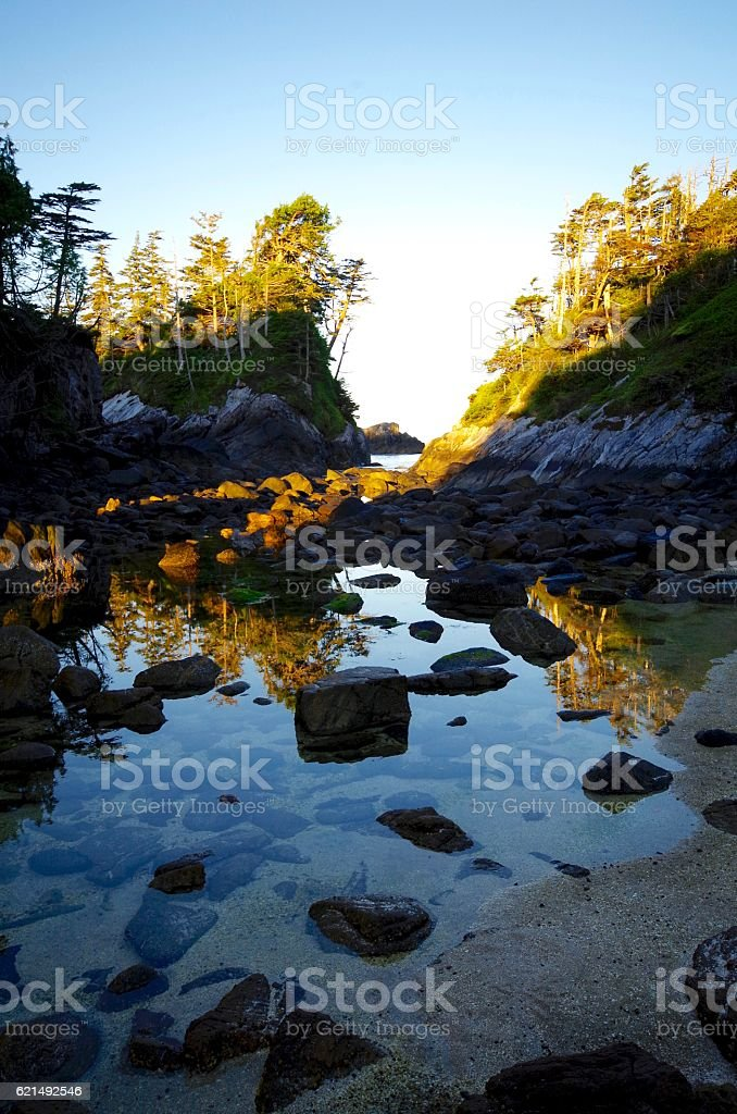 Tree covered islands reflected in tide pool at sunrise photo libre de droits