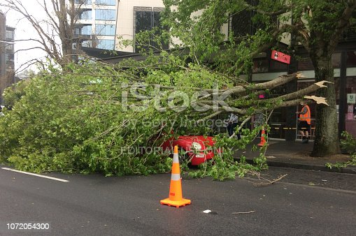 684793794istockphoto Tree crashed on a car due to a very high winds and bad weather 1072054300