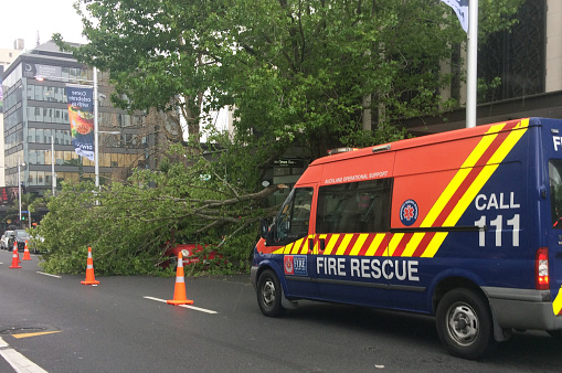 684793794 istock photo Tree crashed on a car due to a very high winds and bad weather 1072054332