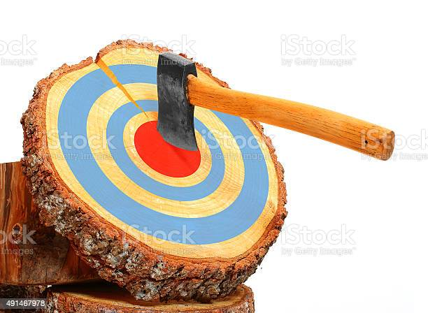 Photo of Tree cut and axe in the target.