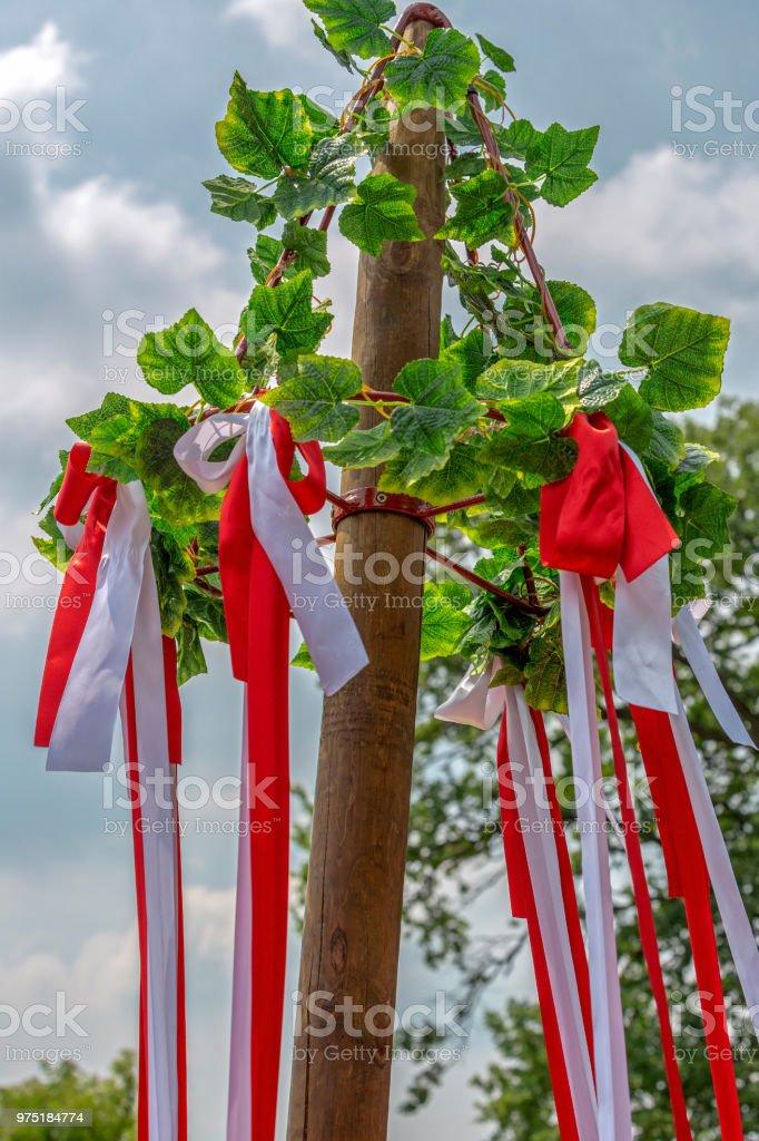 Arbre décoré de feuilles et rubans colorés - Photo