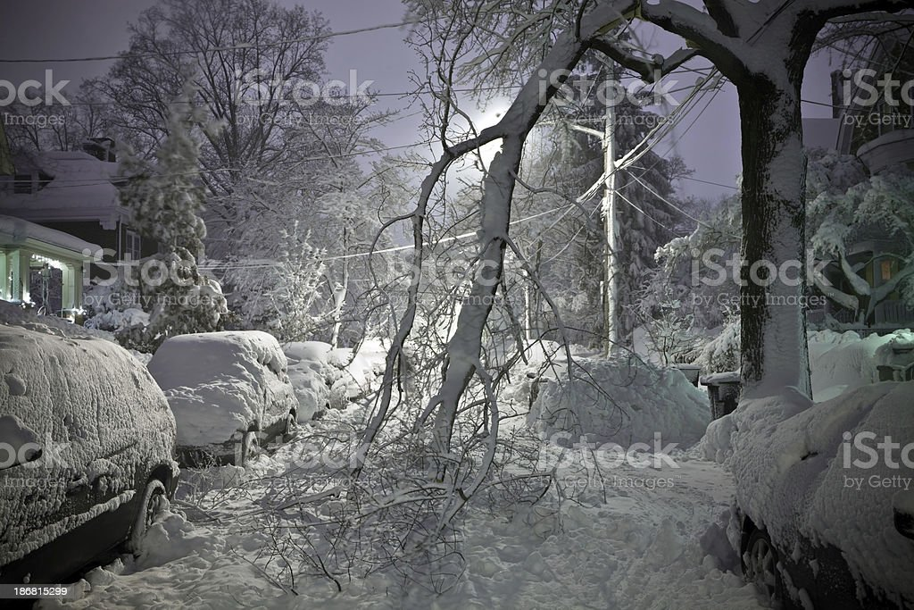 Tree Fallen in Street With Snow stock photo