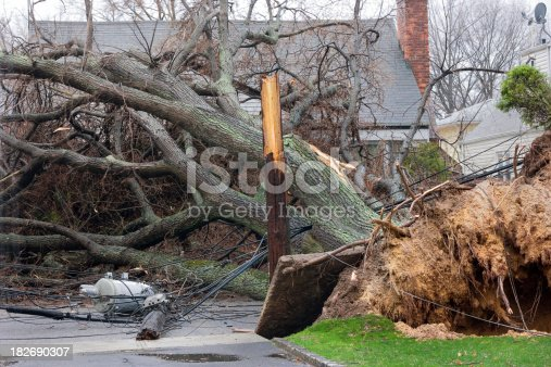Tree falls after Nor'easter storm and takes down a telephone pole with Transformer.Please Also See: