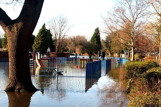Tree Flood scene stock photo