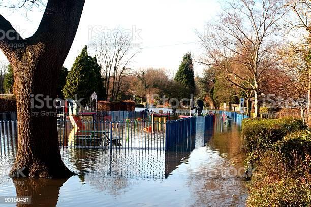 Tree Flood Scene Stock Photo - Download Image Now