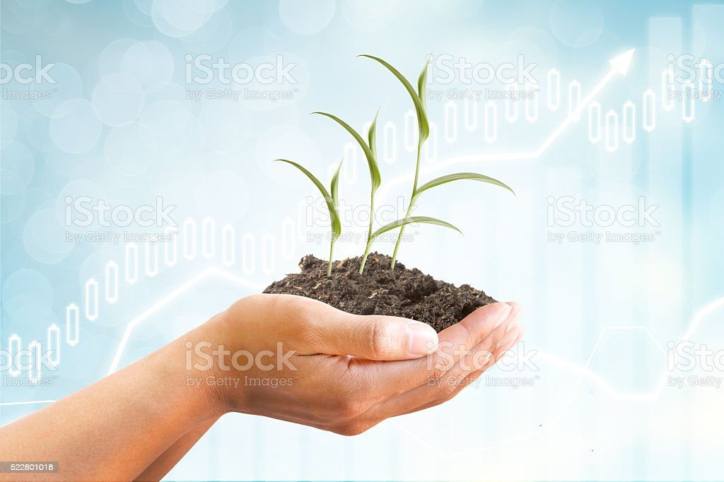 Tree growing and graph and finance concept stock photo