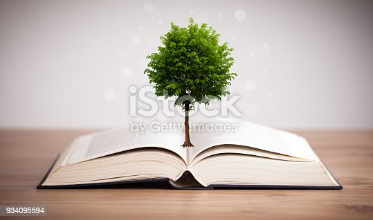 istock Tree growing from an open book 934095594
