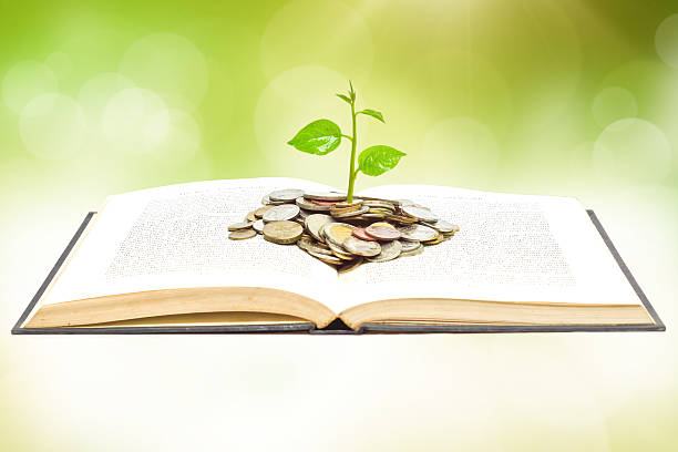tree growing from book with coins stock photo