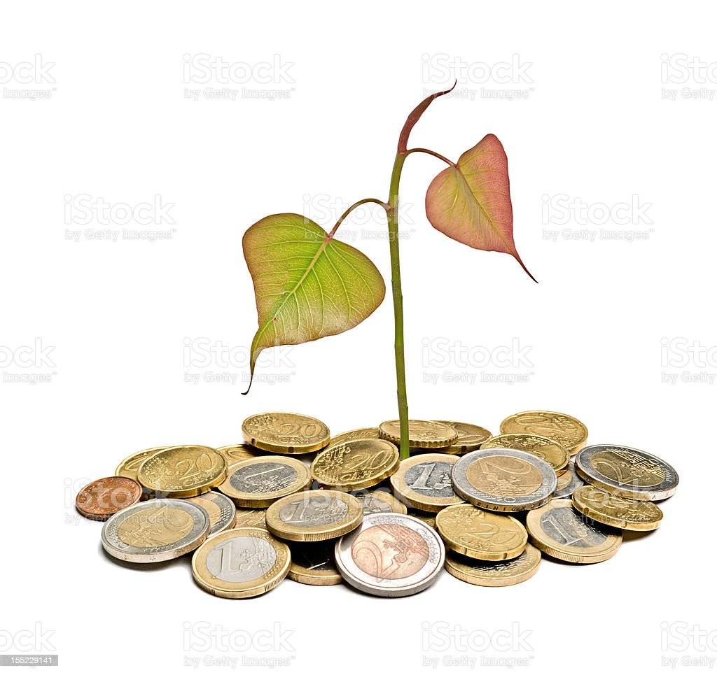 Tree growing from pile of coins royalty-free stock photo