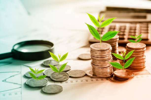 tree growing on coins idea for growing business concept - responsible business stock photos and pictures