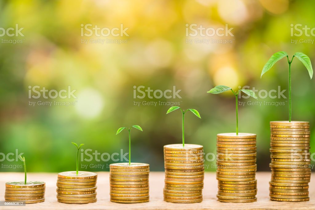 Tree growing on one dollar coins arranged as a graph on wood table with natural bokeh background stock photo
