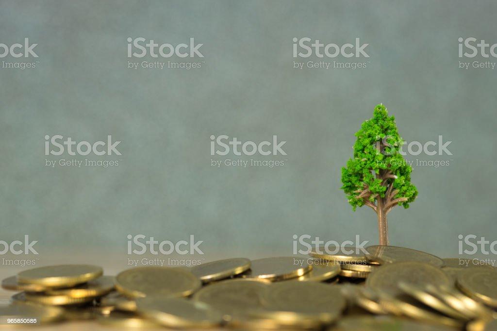Boom groeien op stapel van gouden munten, financiële investeringen van de ondernemingen van de groei en maatschappelijk verantwoord ondernemen of MVO-praktijken en concept van duurzame ontwikkeling. - Royalty-free Achtergrond - Thema Stockfoto