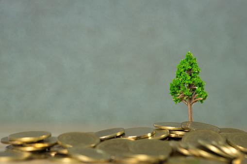 Boom Groeien Op Stapel Van Gouden Munten Financiële Investeringen Van De Ondernemingen Van De Groei En Maatschappelijk Verantwoord Ondernemen Of Mvopraktijken En Concept Van Duurzame Ontwikkeling Stockfoto en meer beelden van Achtergrond - Thema