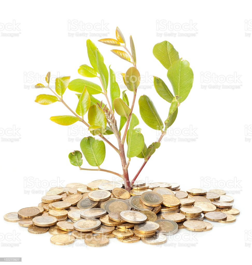 Tree growing out of money royalty-free stock photo