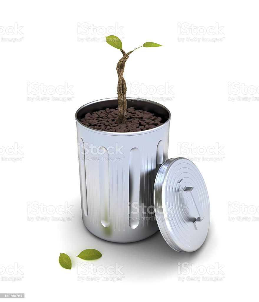 tree grown out of garbage stock photo