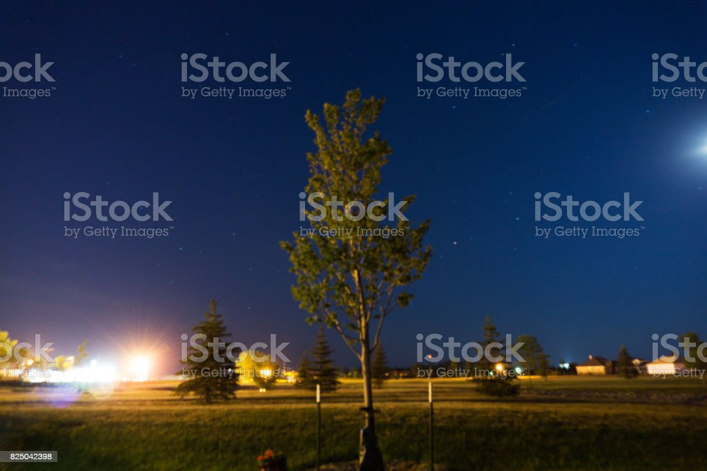 Tree Highway stock photo