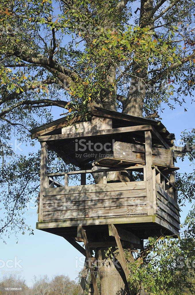 Tree house royalty-free stock photo