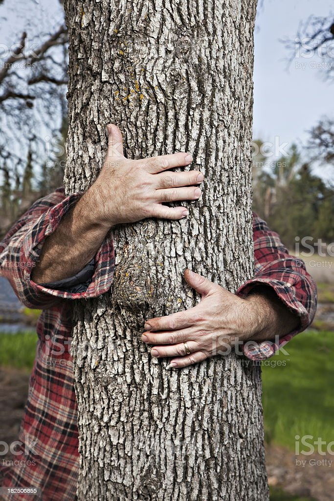 Arbre Hug - Photo