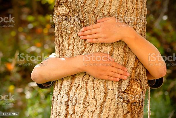 Tree Hugger Stock Photo - Download Image Now