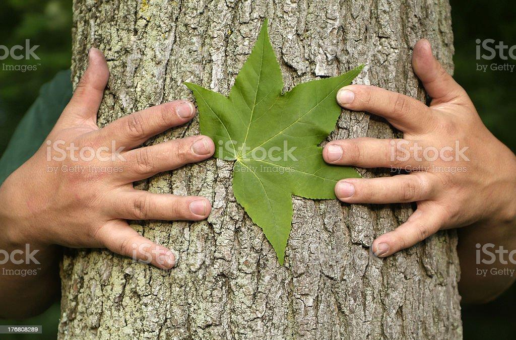 Tree hugging environmentalist stock photo