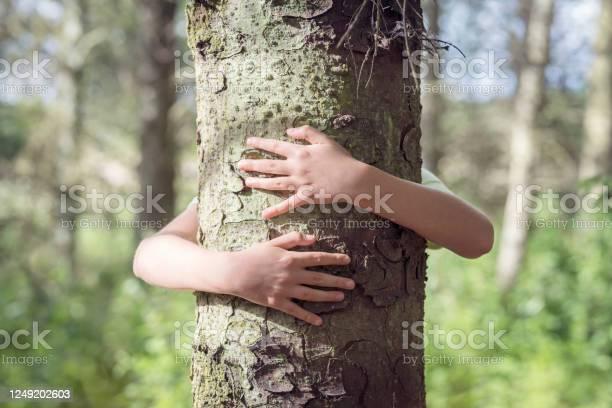 Photo of Tree hugging, little boy giving a tree a big hug