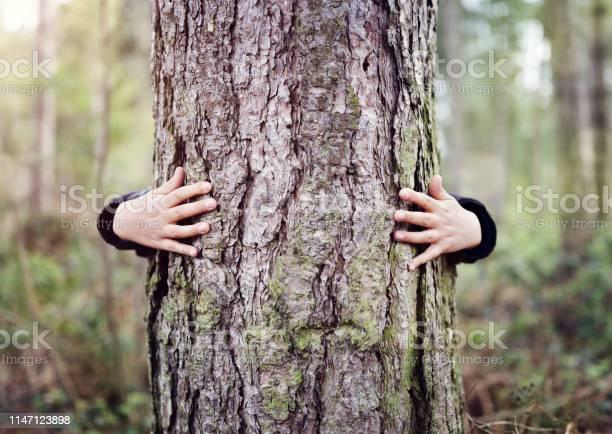 Photo of Tree hugging, love nature