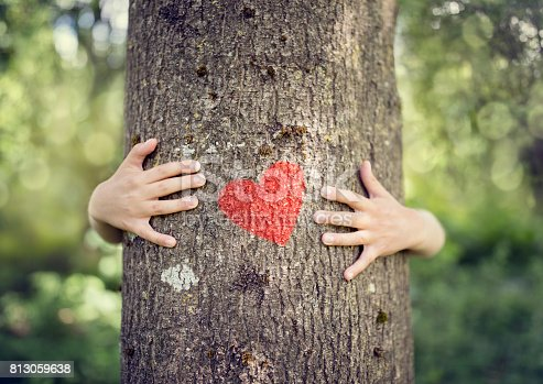 istock Tree hugging, love nature 813059638