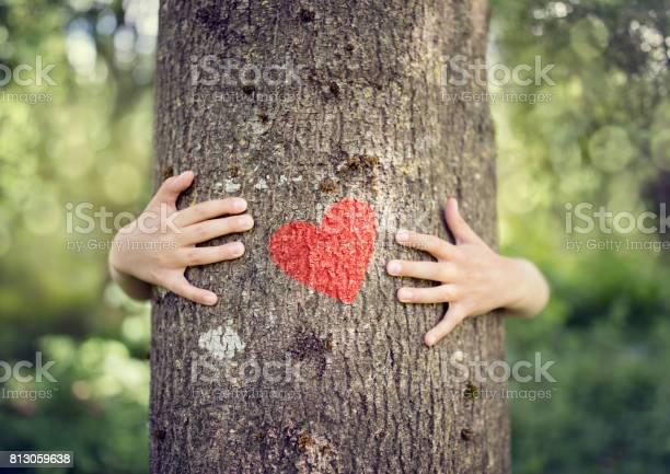 Tree hugging love nature picture id813059638?b=1&k=6&m=813059638&s=612x612&h=8zu4dsdj2mjiijflyht517wdsmmknqzjti8te6c1914=