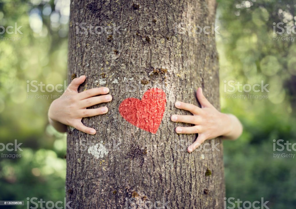 Tree hugging, love nature stock photo