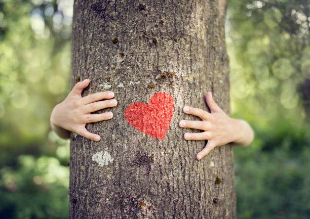 tree hugging, love nature - sustainable living stock pictures, royalty-free photos & images